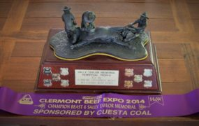 Clermont Beef Expo Achievement