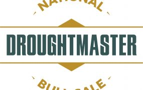Droughtmaster National Sale | Yaralla Droughtmasters