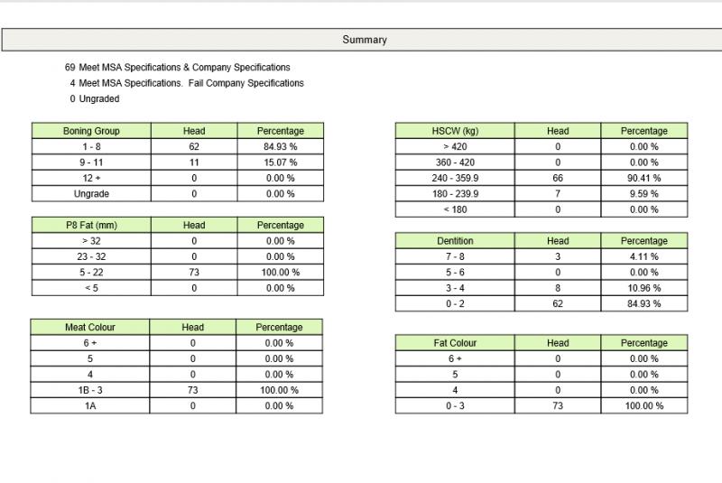 MSA Heifer Summary