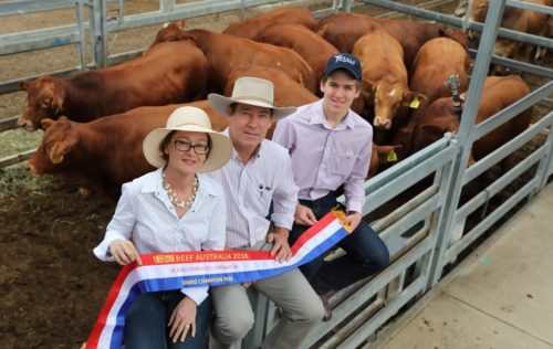 Beef Australia 2018 Success – Queensland Country Life Article | Yaralla Droughtmasters